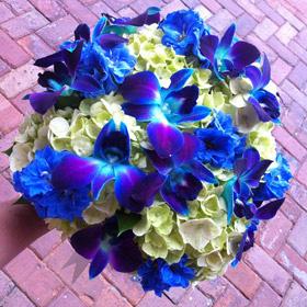 Green-Hydrangea-Blue-Orchid