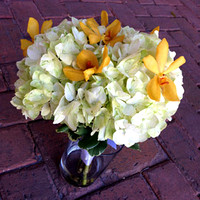 Green-Hydrangea-Yellow-Orchid