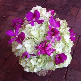 Green-Hydrangea-Purple-Orchid